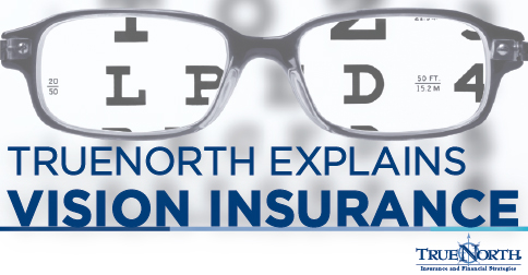 Vision Insurance Quotes Endearing Truenorth Companies  Truenorth Provides Sound Business Insurance
