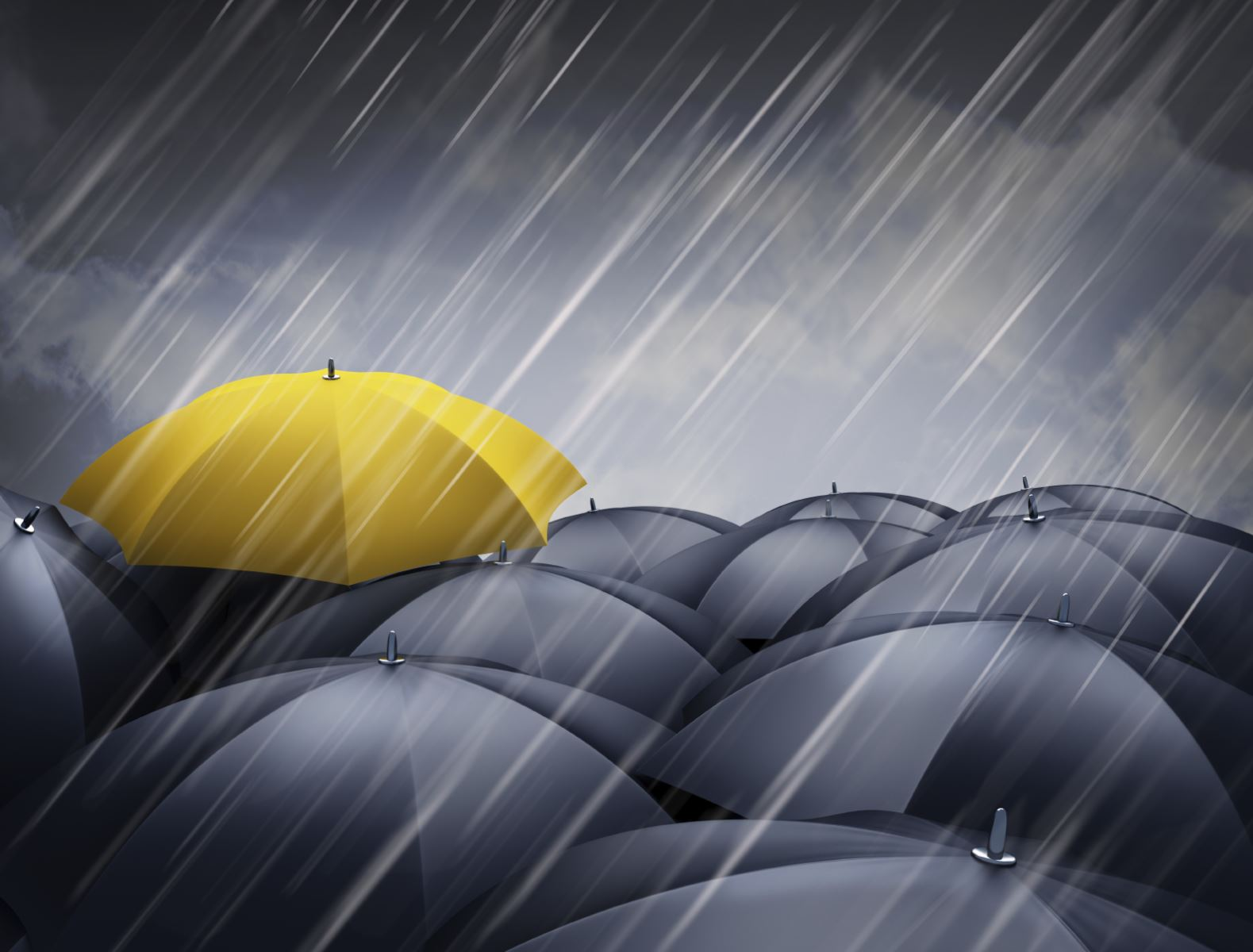 Basics Of Umbrella Insuance Truenorth Companies